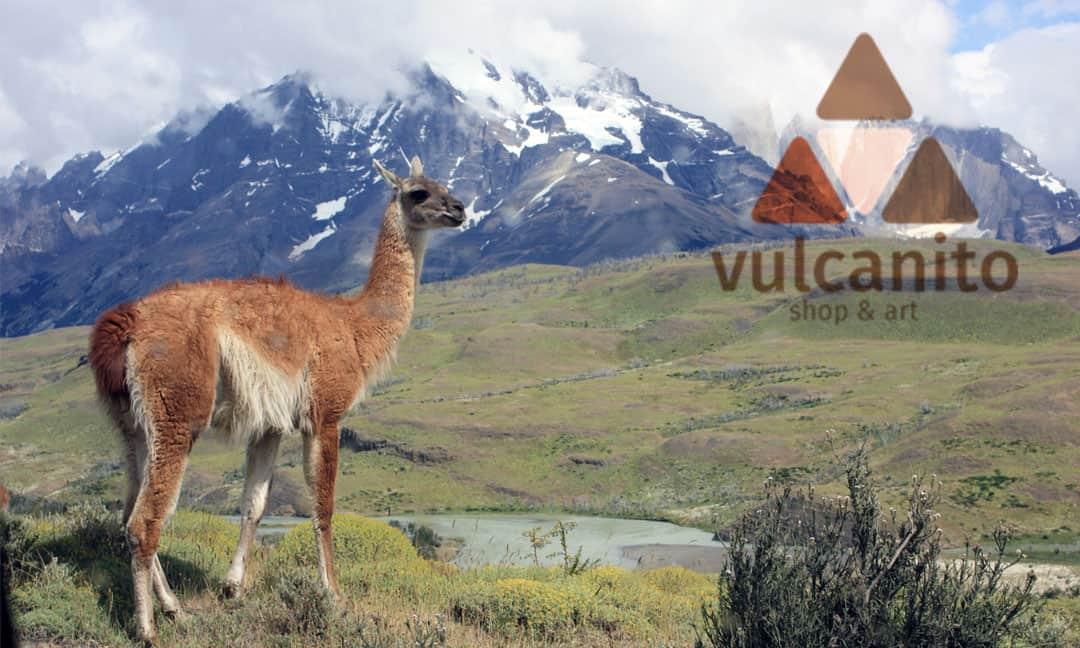 hilledesign Portfolio Vulcanito Logdesign und Visitenkarte