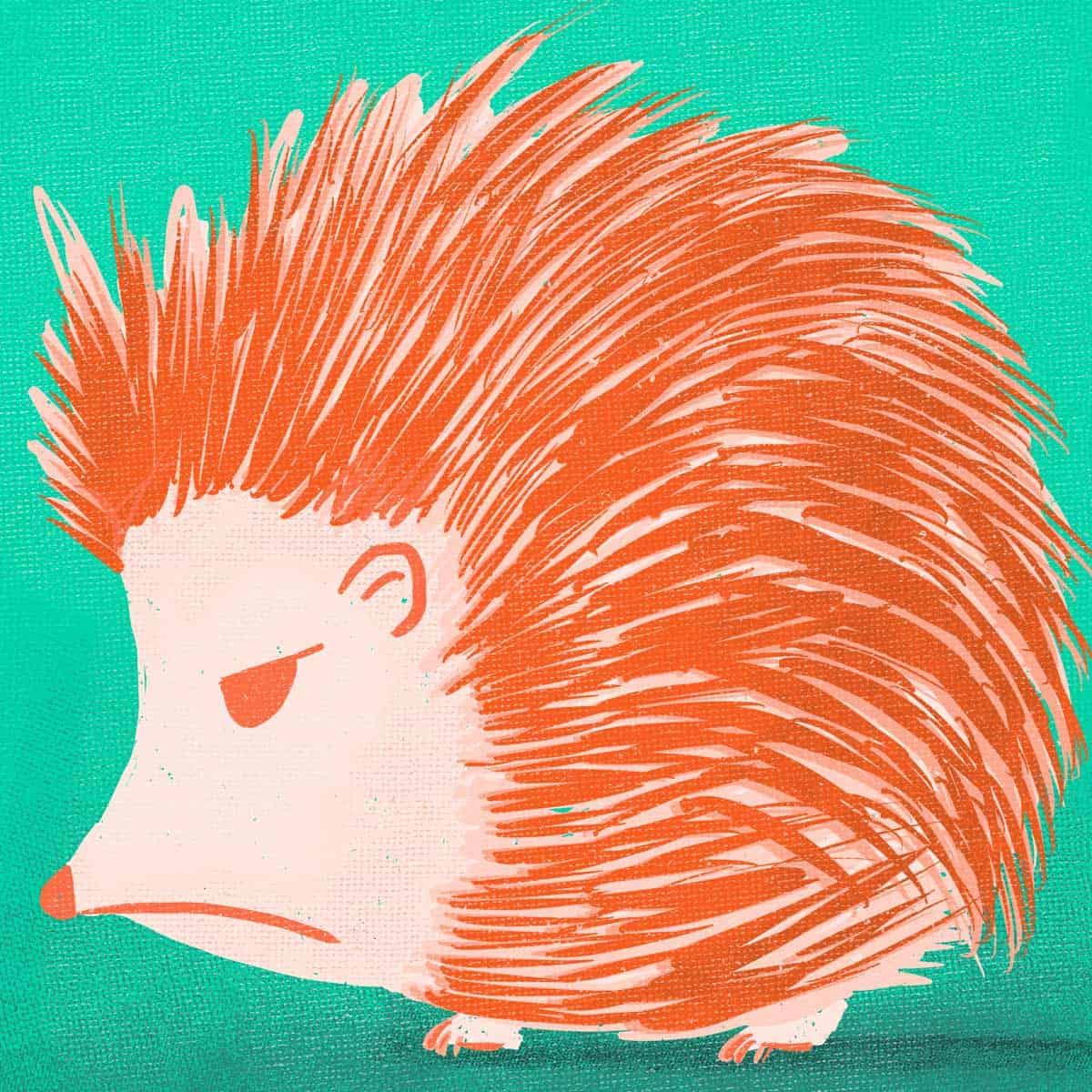 hilledesign-illustration-annoyed-animals-hedgehoge