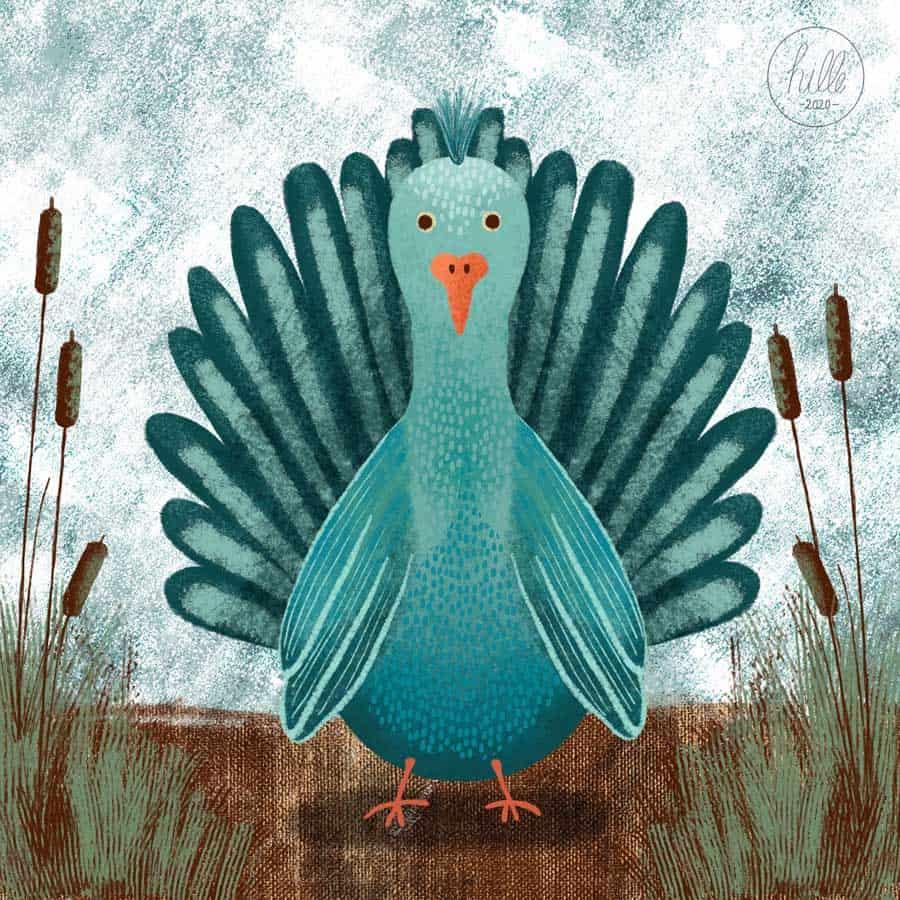 hilledesign-illustrationen-birdy