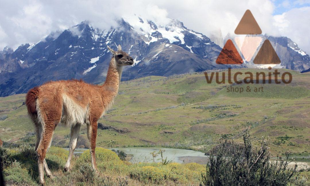hilledesign Portfolio vulcanito Grafik Design Visitenkarte