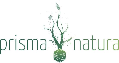 Logo Naturheilpraxis Prisma Natura